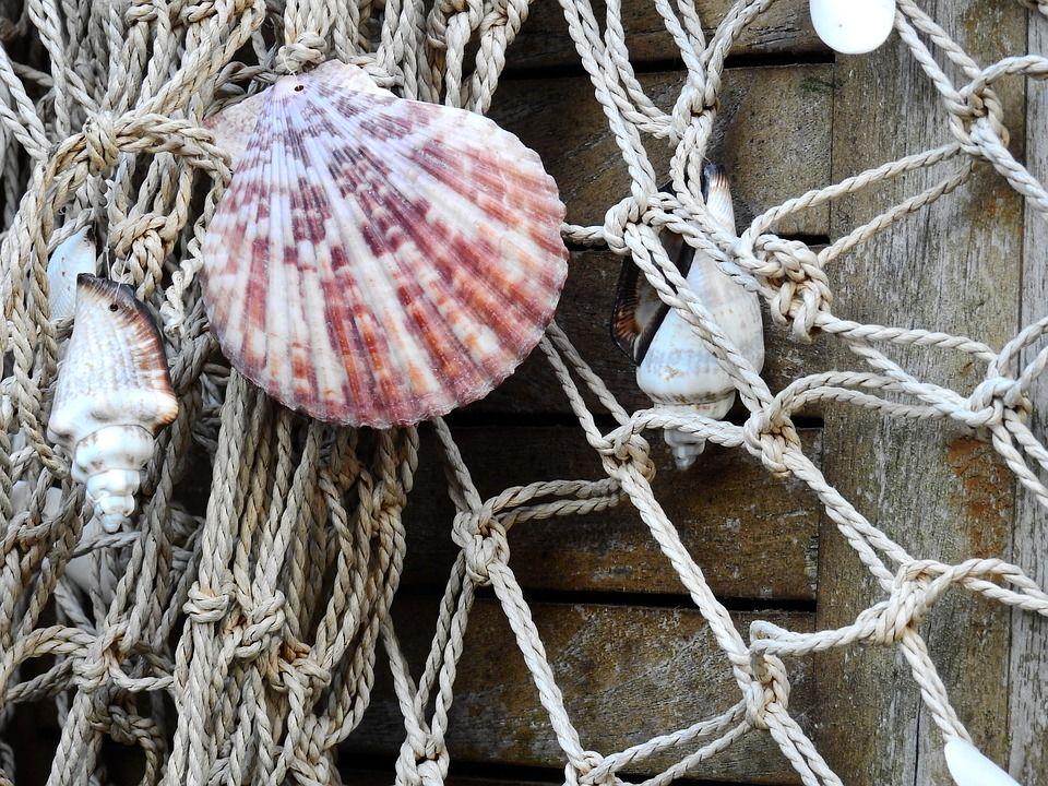 Горнолыжные курорты Сочи загружены на90 процентов