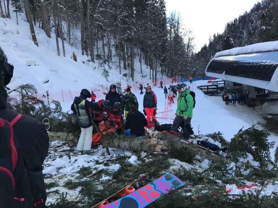ВСочи нагорнолыжной трассе из-за падения дерева пострадала туристка