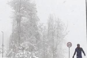 ©Скриншот видео из телеграм-канала t.me/livesochi