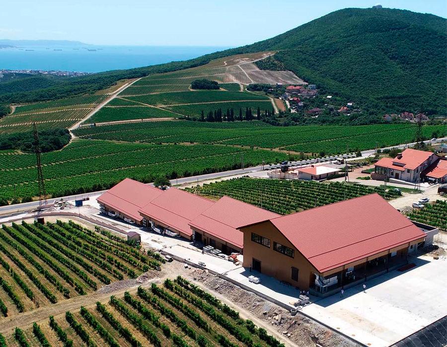 ©Фото пресс-службы «Шато Пино», instagram.com/chateau_pinot_winery