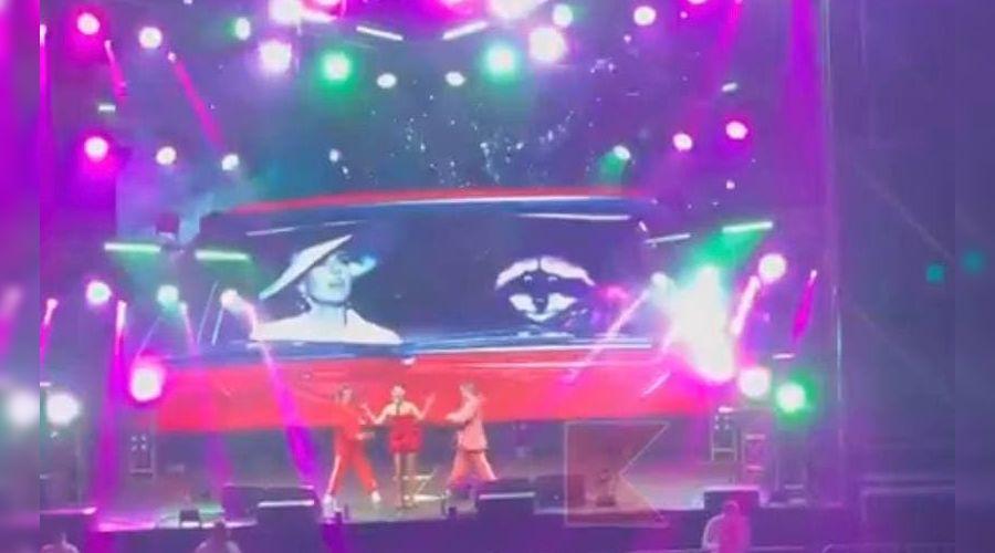 ©Скриношот видео из телеграм-канала «Типичный Краснодар», t.me/krd_tipich_ru