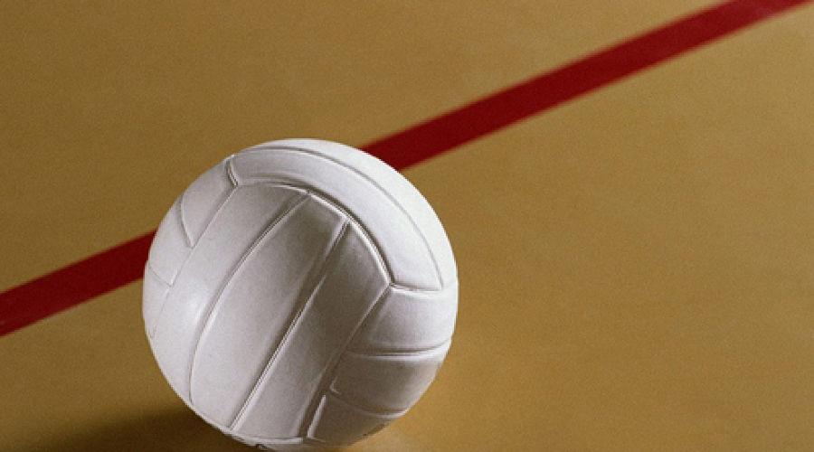 Волейбол ©Фото Юга.ру