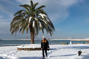 Сочи в снегу ©Никита Быков, Юга.ру