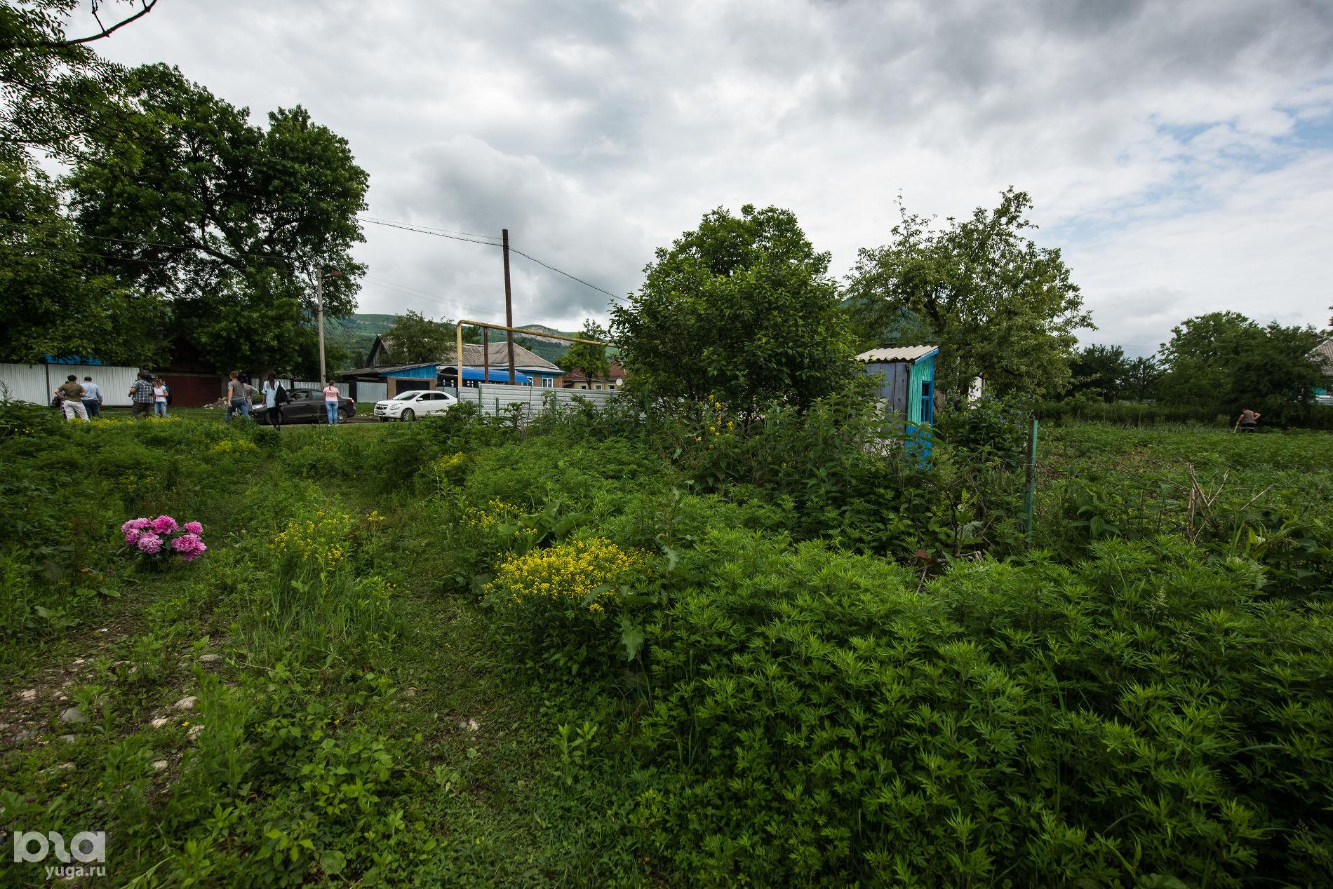 Место убийства Натальи Дмитриевой ©Фото Елены Синеок, Юга.ру