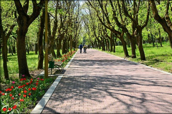 ВПятигорске займутся реконструкцией Парка Победы