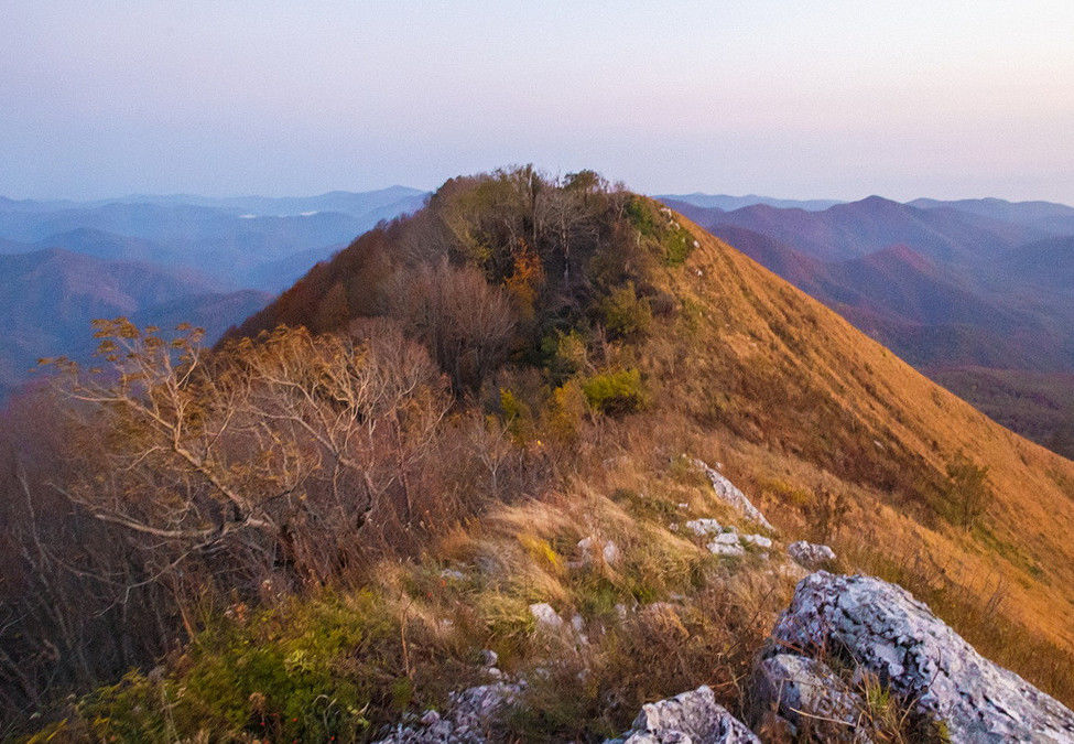 Гора Большое Псеушхо ©Фото «Экологической вахты по Северному Кавказу»