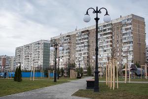 Аллея в честь 80-летия образования Краснодарского края ©Фото Елены Синеок, Юга.ру