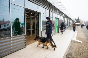 Транспортная полиция в аэропорту Краснодара ©Фото Елены Синеок, Юга.ру