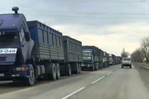 На трассе в Темрюкском районе скопилось более 400 грузовиков из-за остановки зернового терминала ©Фото пресс-службы администрации Темрюкского района