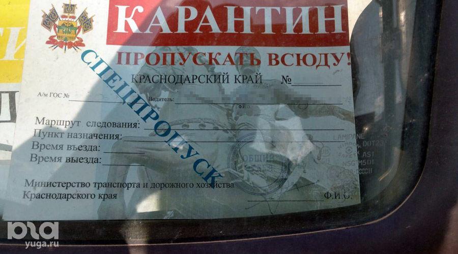 ©Фото Никиты Быкова, Юга.ру