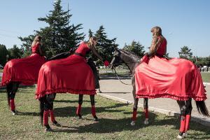 Скачки на приз губернатора и атамана края в Краснодаре ©Фото Алины Десятниченко, Юга.ру