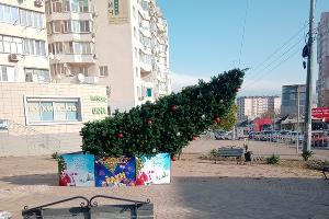©Фото пользователя Jj Okocha со страницы vk.com/nvrsk