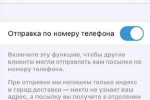 ©Изображение пресс-службы «Почты России»