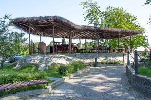 Этностенд у Тюльпанового дерева ©Фото Екатерины Штыбиной