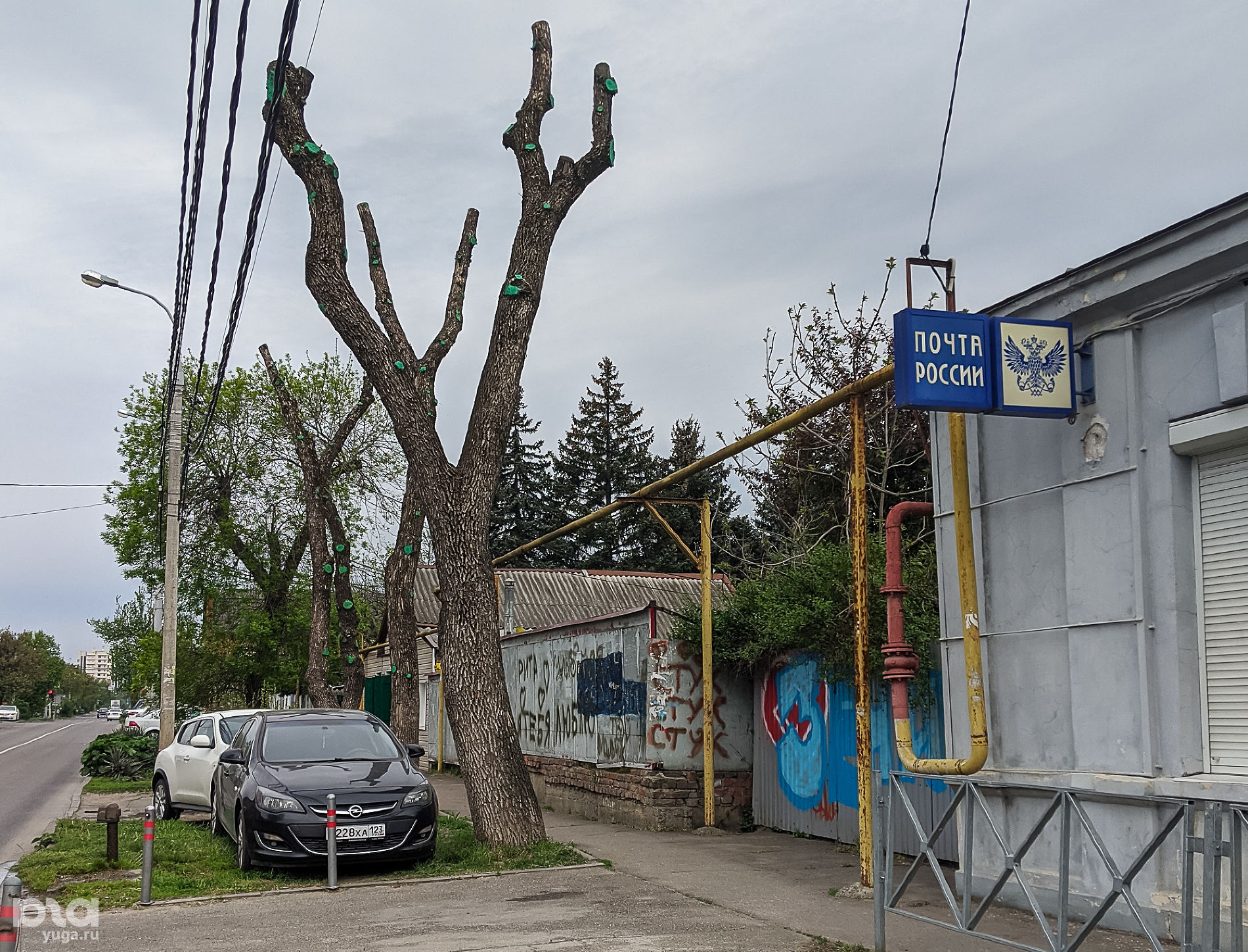 ©Фото Александры Прохоренковой-Аксеновой, Юга.ру