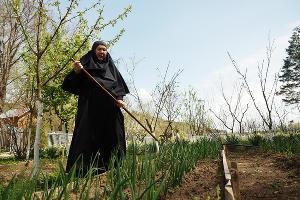 Сестра работает в огороде при женском монастыре в Апшеронске  ©Фото Виталия Тимкива, Юга.ру