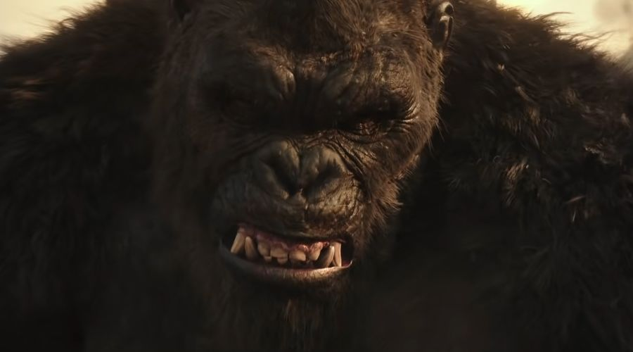Кадр из фильма «Годзилла против Конга», реж. Адам Вингард, 2021 год  ©Фото с сайта kinopoisk.ru