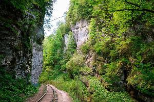 ©Фото с сайта Памятник природы «Гуамское ущелье», guamka-kuban.ru/