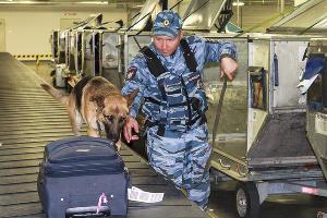 Кинолог транспортной полиции проверяет багаж пассажиров на наличие запрещенных веществ в аэропорту Сочи ©Фото пресс-службы УТ МВД России по ЮФО