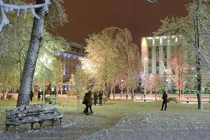 Снегопад в Краснодаре ©Фото Михаила Ступина, Юга.ру
