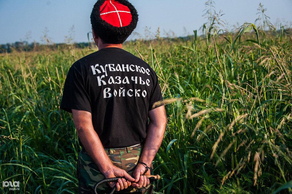 ©Фото Николая Ильина, Юга.ру