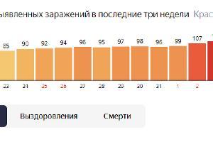 Число новых случаев заражения на Кубани ©Графика с сайта yandex.ru/covid19