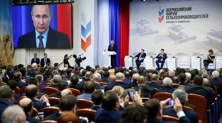 Владимир Путин на Всероссийском форуме сельхозпроизводителей ©Фото пресс-службы администрации Краснодарского края