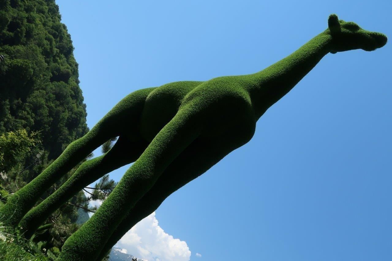 ВСочи появился парк «Зеленая планета»
