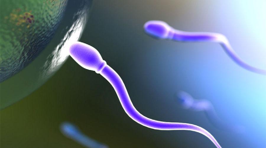 Влияние Спермы На Женщину