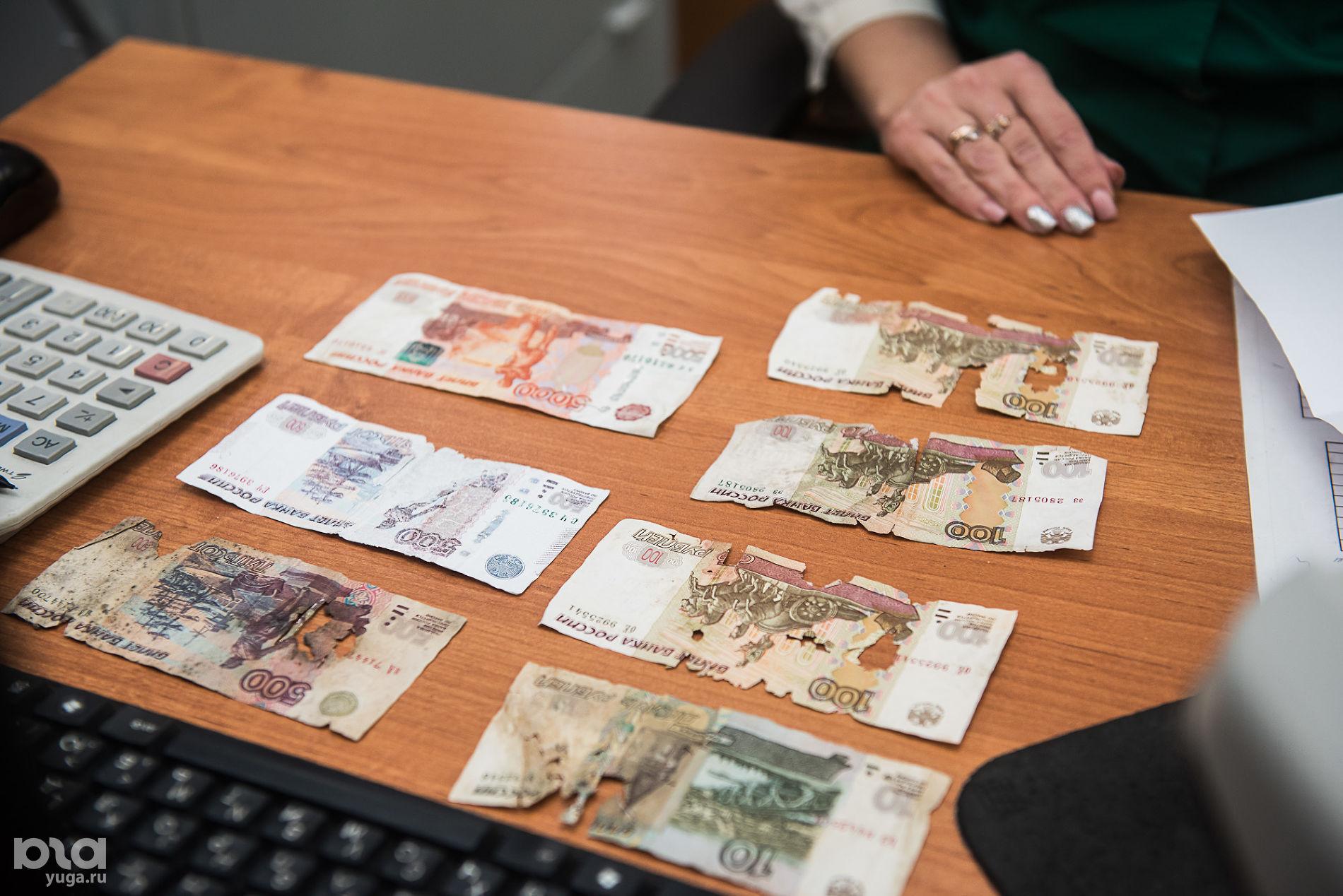 Поврежденные купюры ©Фото Елены Синеок, Юга.ру