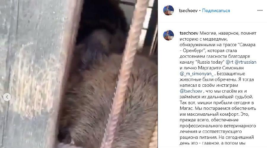 ©Скриншот видео из аккаунта Беслана Цечоева, www.instagram.com/tsechoev