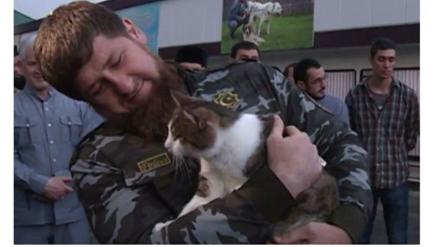 Рамзан Кадыров и его кот Дарир из приюта ©Скиншот из видео @kadyrov_95