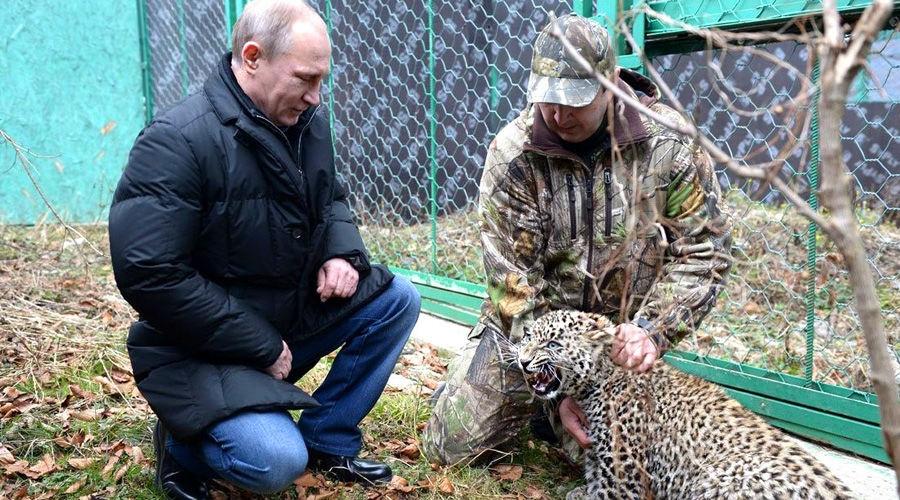 Центр разведения и реабилитации переднеазиатского леопарда ©Фото пресс-службы Кремля, kremlin.ru