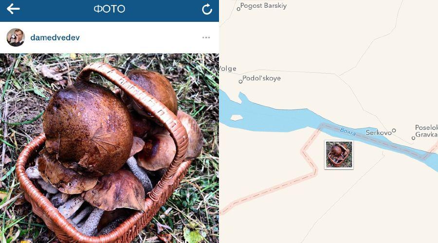 Геотег в инстаграме Медведева ©Фото Юга.ру
