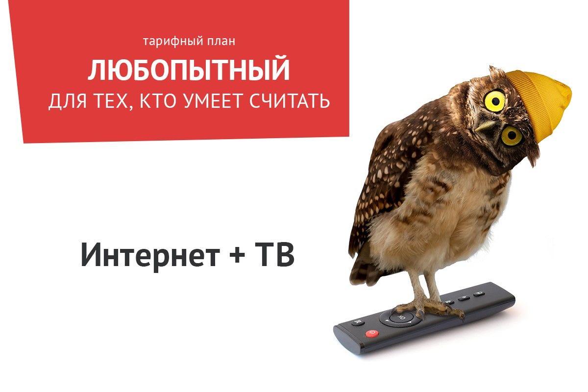 ©Изображение пресс-службы ТТК