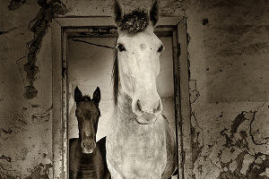 Артем Картавкин «Вход» ©Фото предоставлено фотоклубом «Лагонаки»