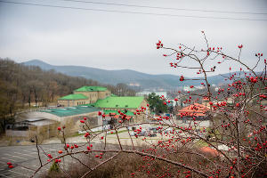 Абрау-Дюрсо ©Фото Евгения Мельченко, Юга.ру