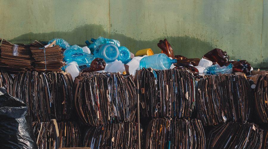 Раздельный сбор картона и пластика ©Фото Игната Кушнарева, Unsplash.com
