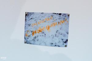 """Предпоказ выставки """"Ублюдки. Кровь - это не вода"""" ©Михаил Ступин, ЮГА.ру"""