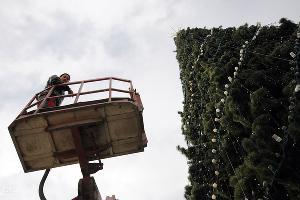 2011 год в фотографиях. Установка главной краснодарской елки ©http://www.yuga.ru/photo/1043.html