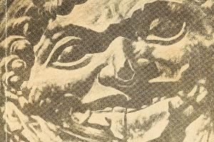 Обложка книги «Курганы рассказывают...» ©Фото из архива музея имени Фелицына