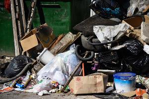 Проблемы с вывозом мусора в Краснодаре ©Фото Елены Синеок, Юга.ру