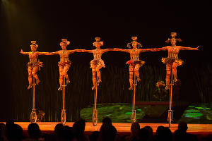 Генеральная репетиция шоу ТОТЕМ Cirque du Soleil в Сочи ©Фото Артура Лебедева, Юга.ру