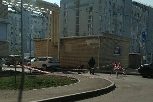 ©Фото предоставлено порталу Юга.ру жителями ЖК «Цветы» в Краснодаре