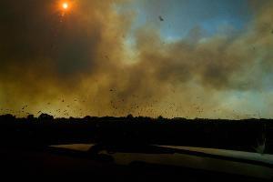 Пятые сутки пожара в Могукоровке ©Фото Каси Кульковой, группа «Добровольные пожарные Кубани»