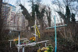 Всесвятское кладбище ©Елена Синеок, Юга.ру
