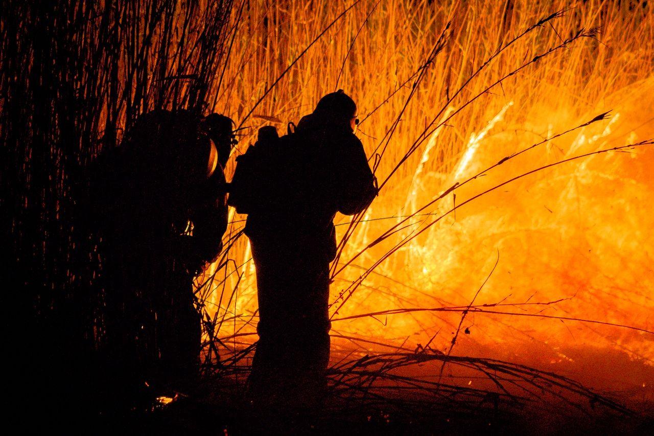 Добровольные пожарные тушат пожар в Могукоровке ©Фото Алисы Пелешенко, группа «Добровольные пожарные Кубани»