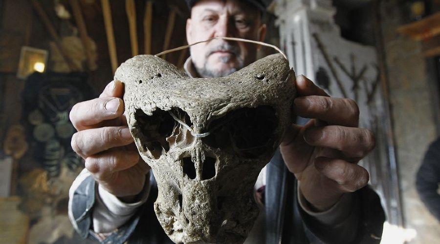 Найденные в Адыгее черепа ©Фото (с) Влад Александров