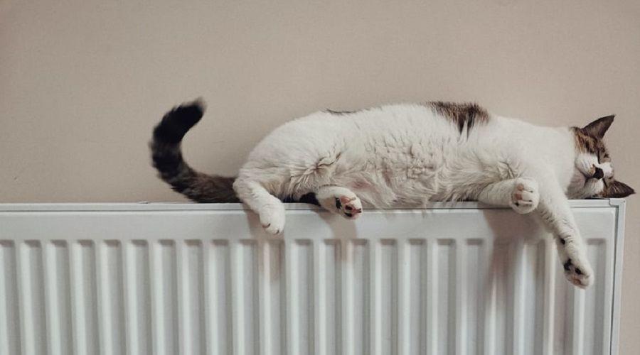 В Краснодаре до 20 октября всем дадут отопление