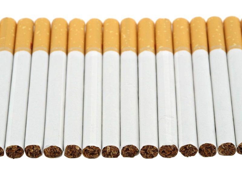 Производство табачных изделий краснодарский край africa ice jack купить сигареты